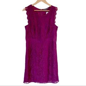 StitchFix Brixton Ivy Fuchsia Lace Dress